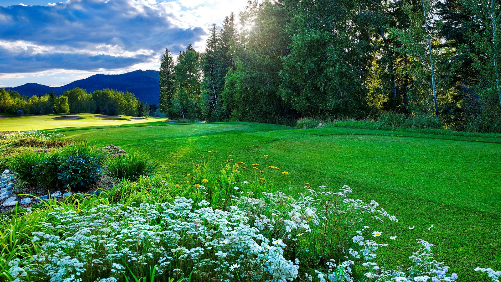 Steamboat Golf Courses - Sheraton Steamboat Resort
