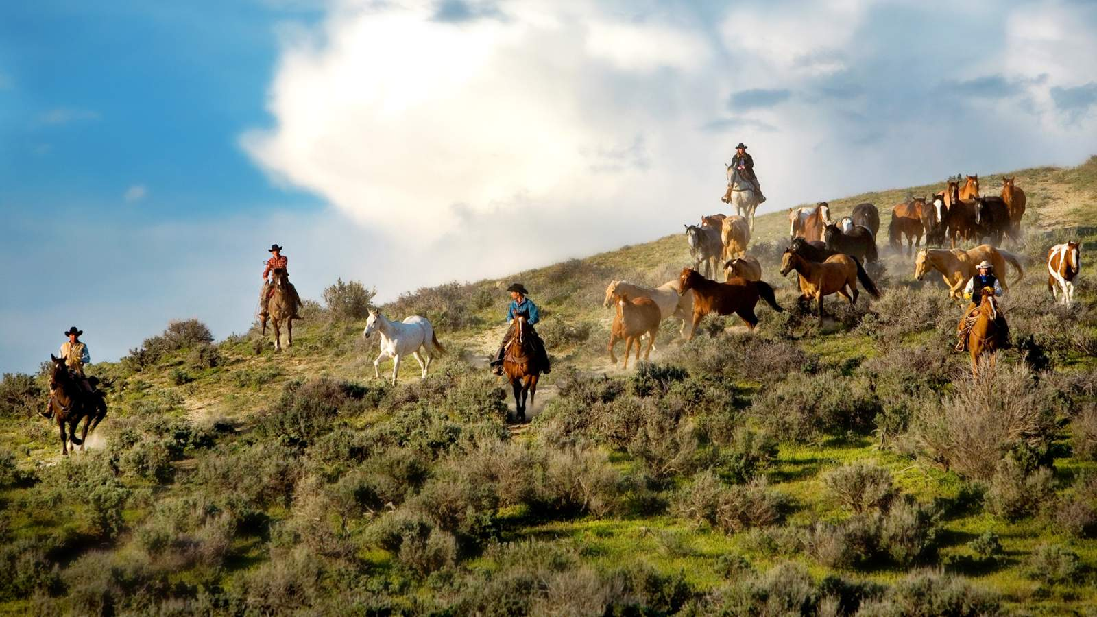 Sheraton Steamboat Resort Villas - Horseback Riding
